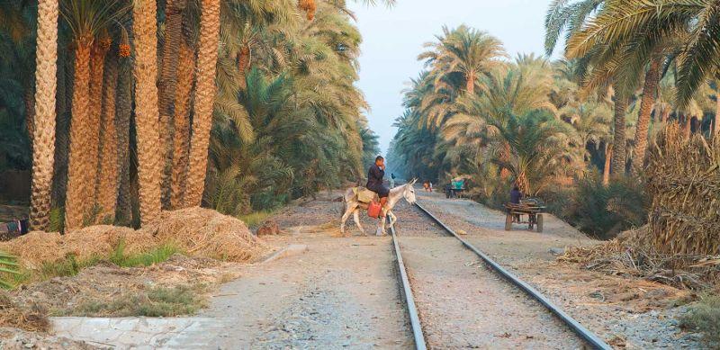 EGIPTO CLASICO EN TREN